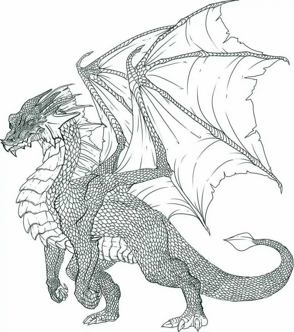 Картинки для начинающих карандашом драконы