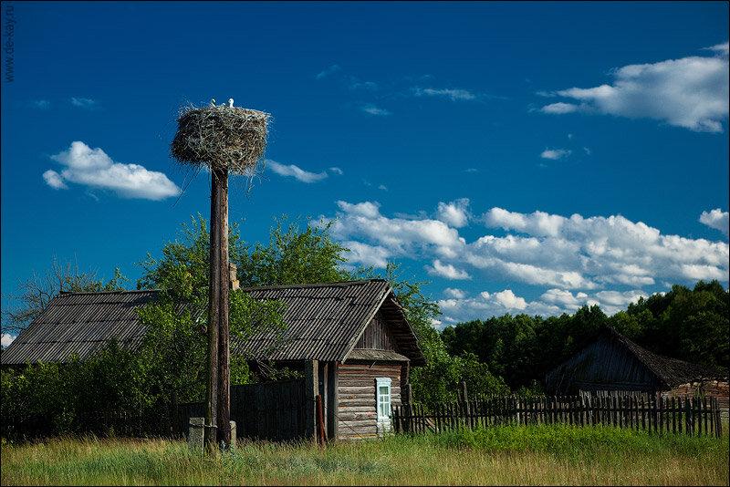 вымыть, очистить белорусские деревни фото выклевываются помощью