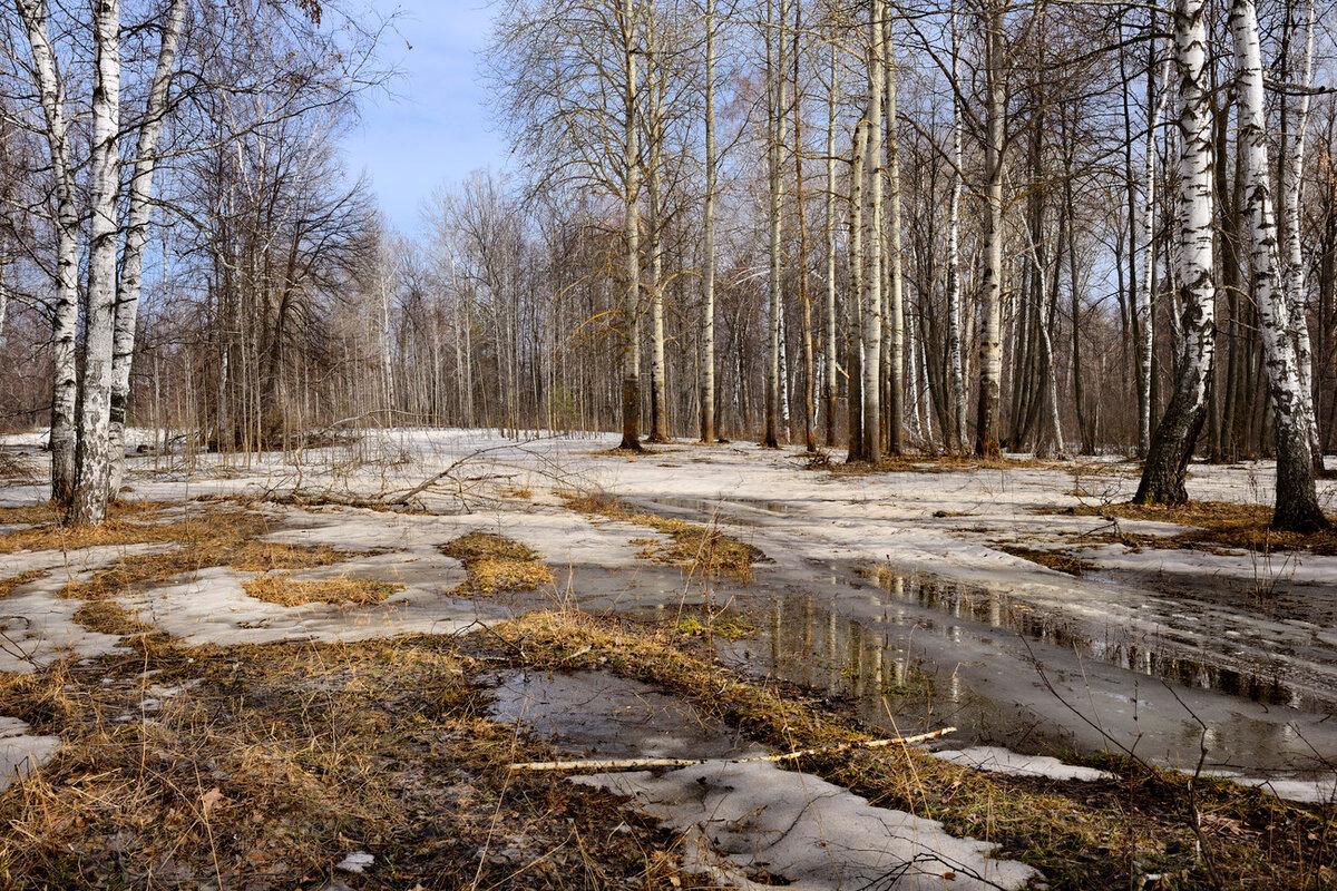 фото тающий снег ранняя весна рыбацком современный жилой