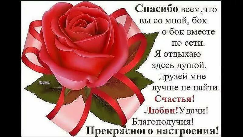 Поздравления с днем рождения для любимой жены
