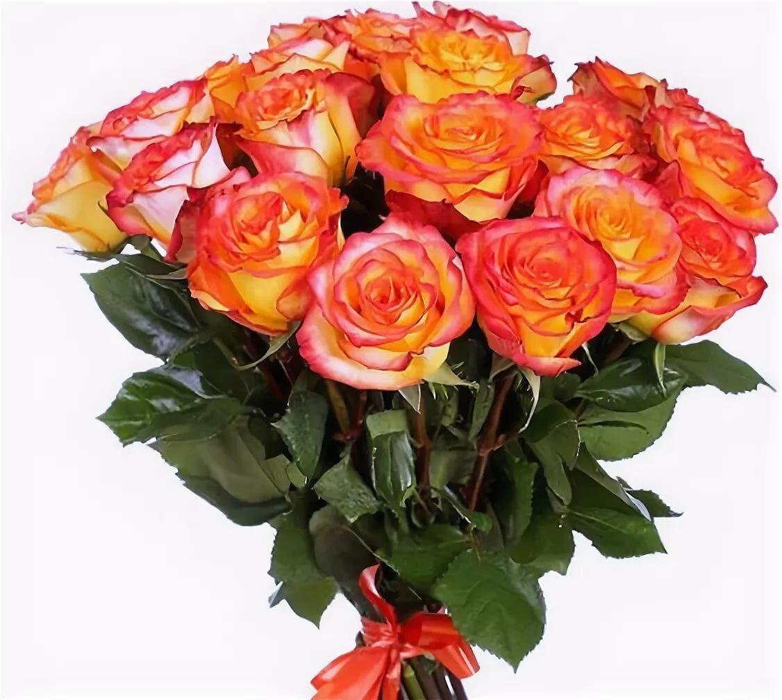 оранжевые розы букет фото хевин кедип