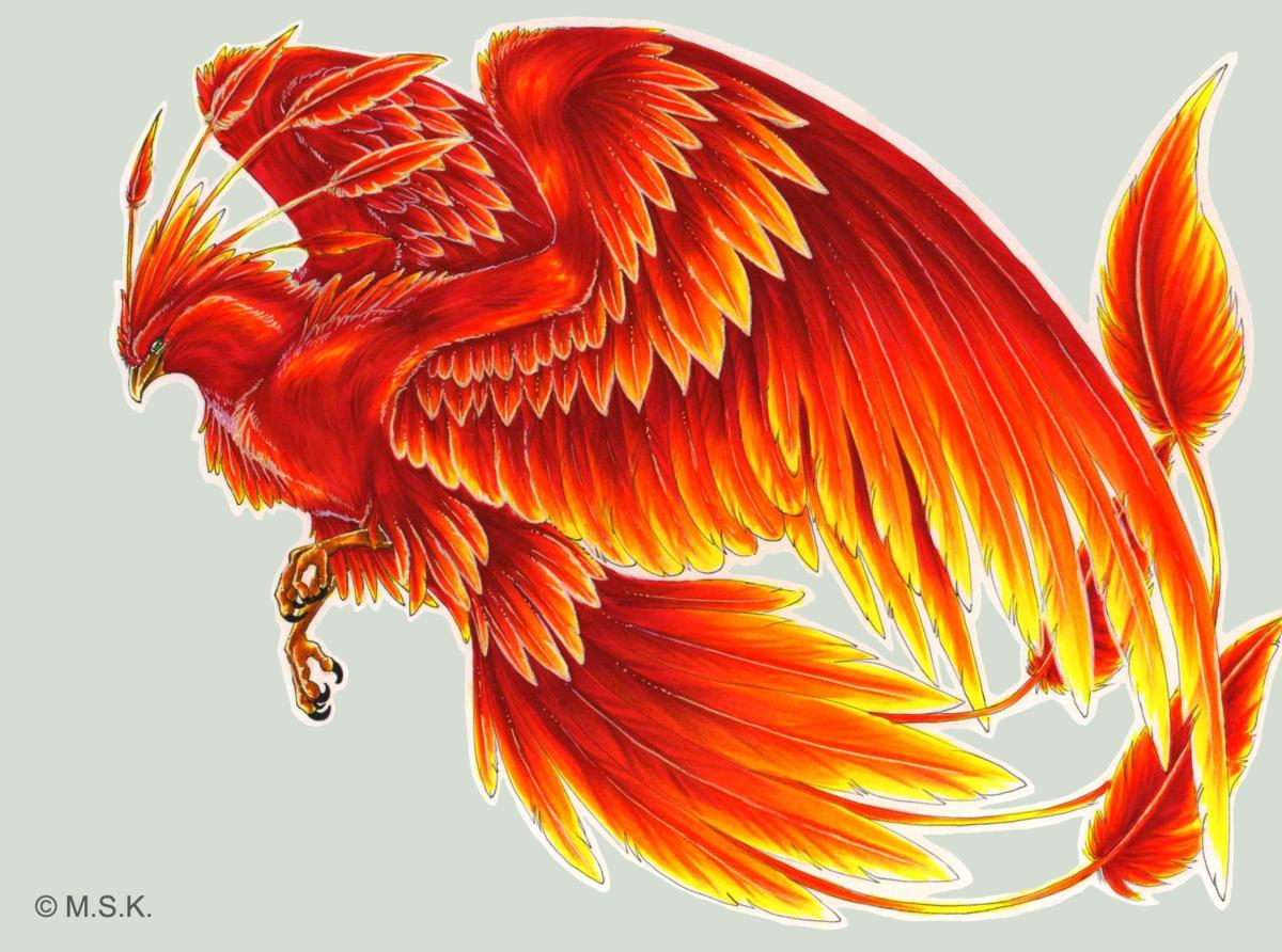 Картинка феникса красивые арты калибрия феникс