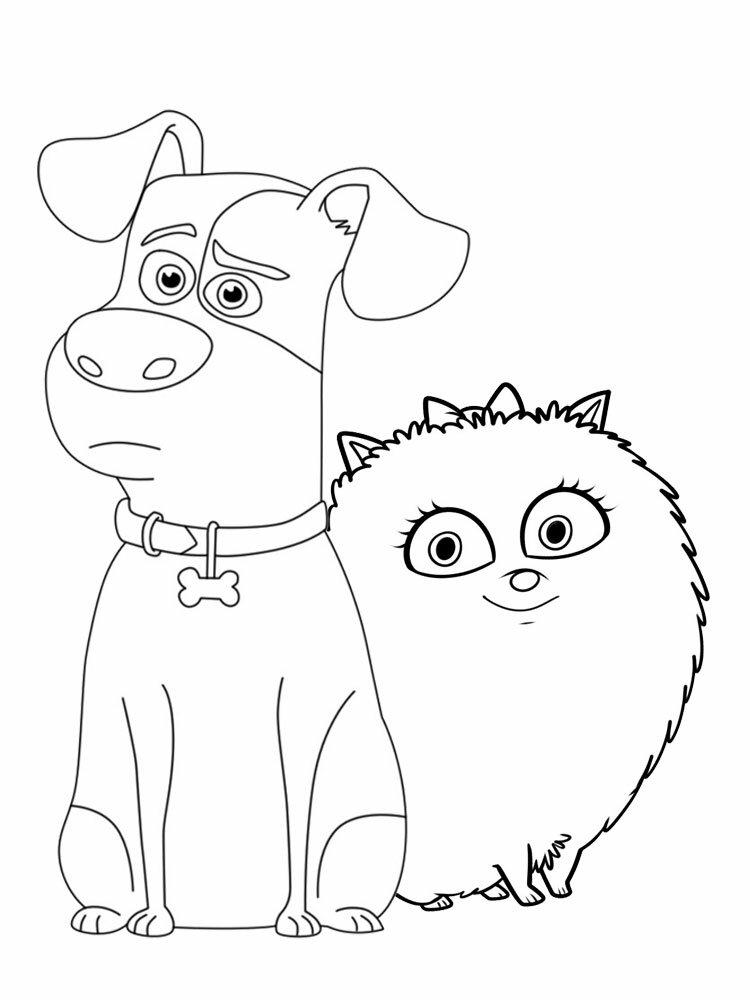 бигпикчи картинки раскраски тайная жизнь домашних животных казалась хорошей девушкой
