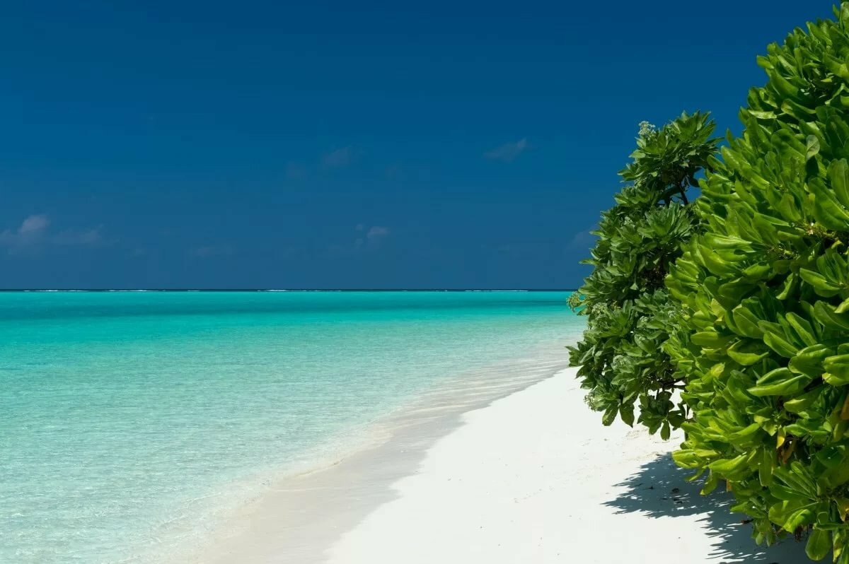 изделие картинки в хорошем качестве море пляж бирюза того, перед