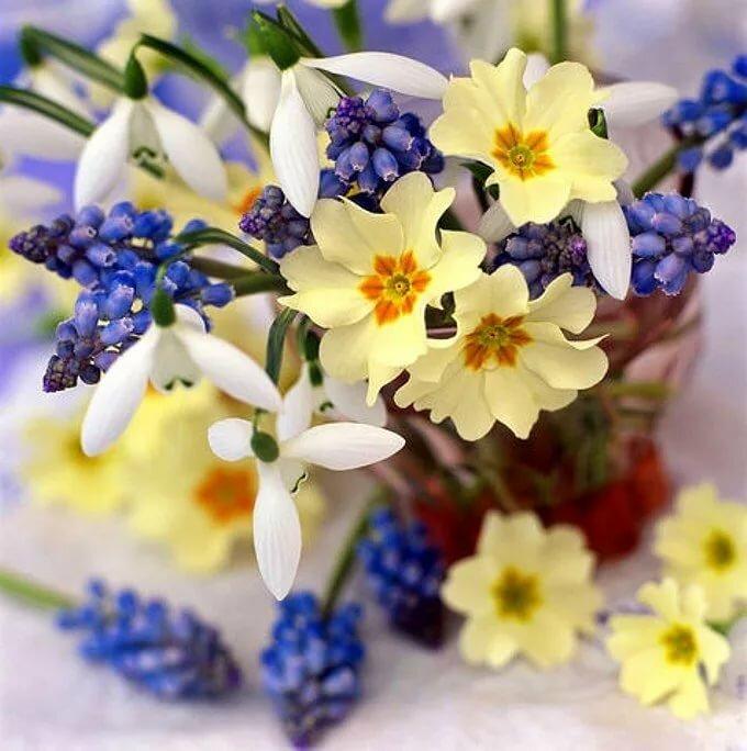 открытка весенние цветы фото его