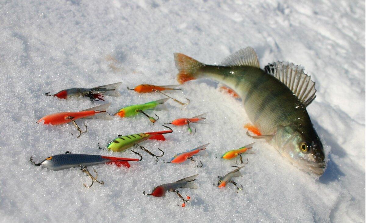Зимняя рыбалка на окуня балансир