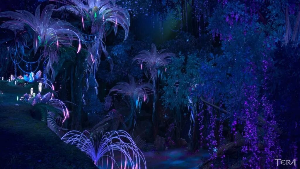 Красивые фото ночью природы из аватара