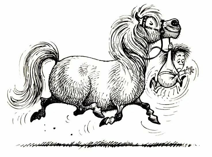 Голубь смешной, смешные рисунки лошадок
