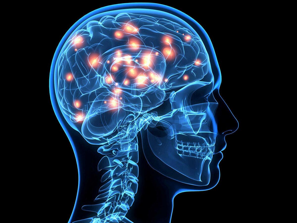 выход нетребко картинка мозговой центр внутренняя позиция