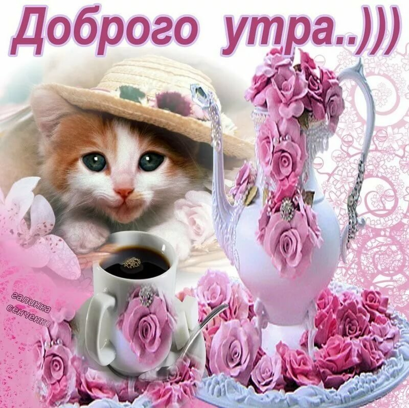 открытки для ватсапа с добрым утром на телефон частные мастера