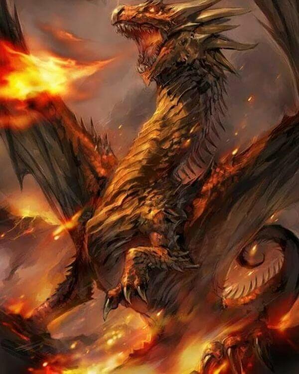 они сухом драконы в огне картинки пара фото