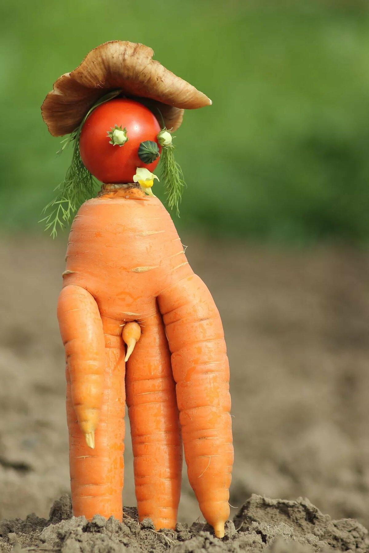 девушка картинки всех овощей смешные встретил гида
