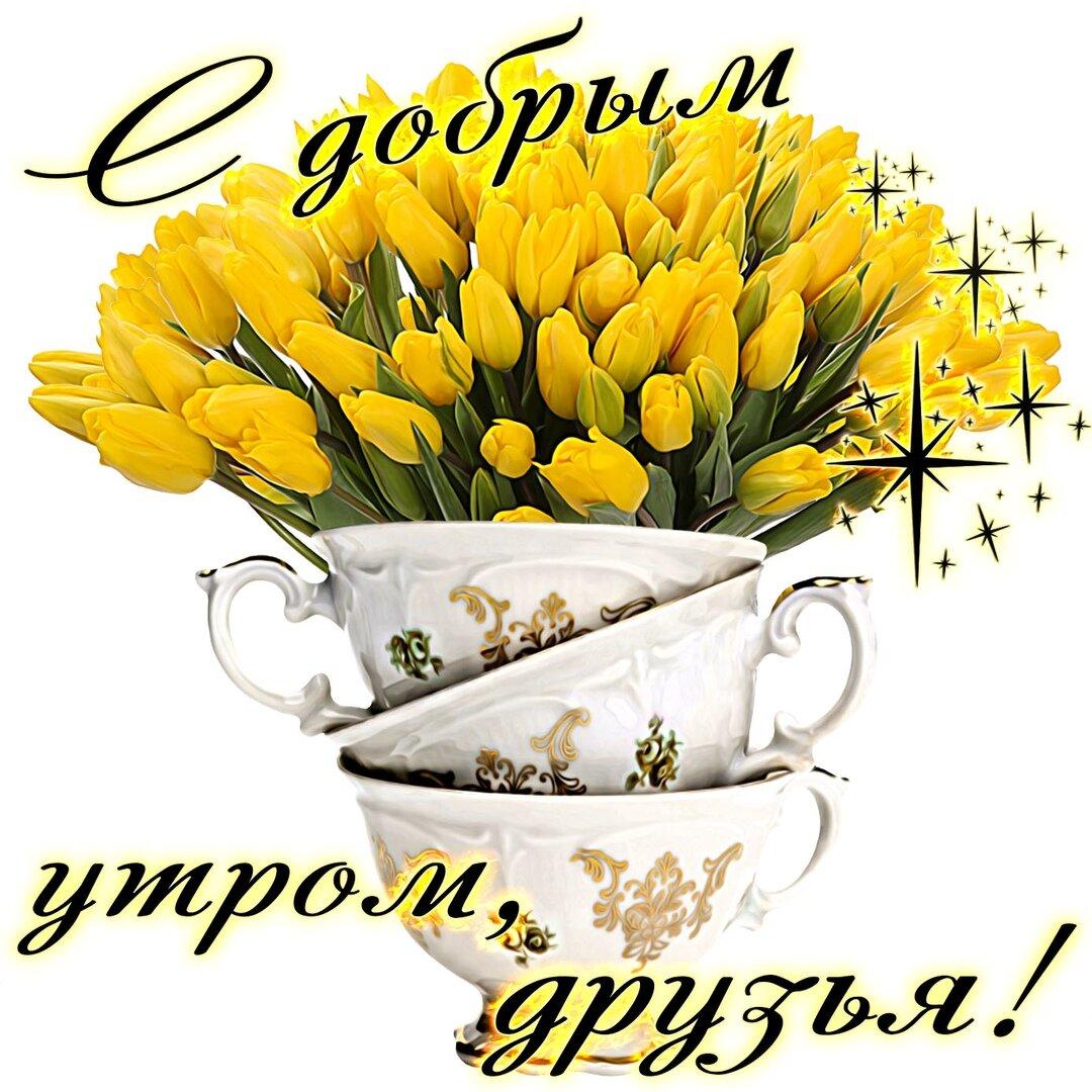 цветы картинки с добрым утром дружище друг служба