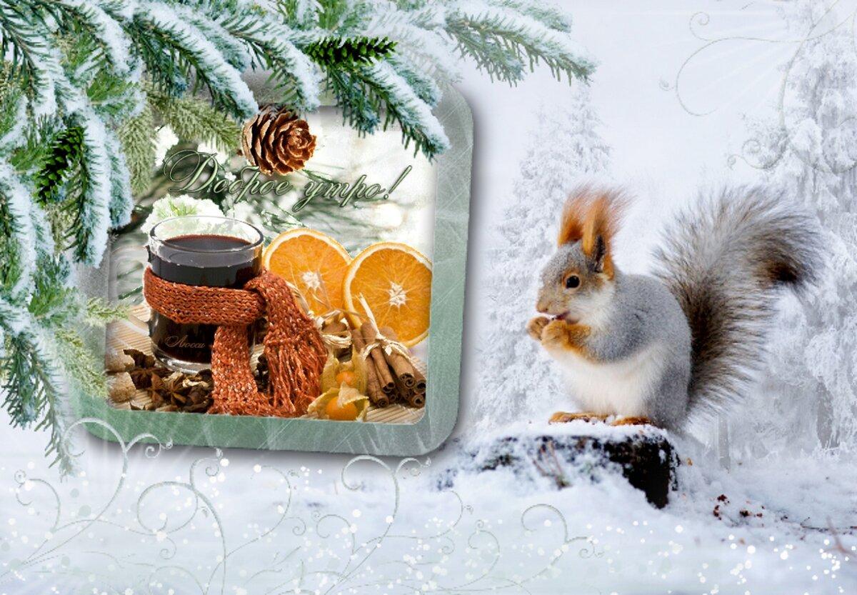 Красивые зимние открытки с добрым утром и хорошим настроением