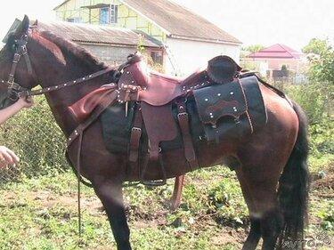 упряжь для лошади седло