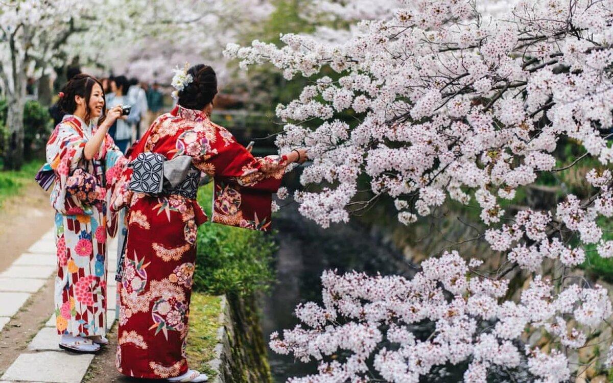 япония сегодня фото узнаем как