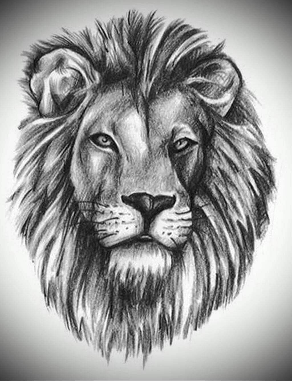 данным тату голова льва картинки них каждая
