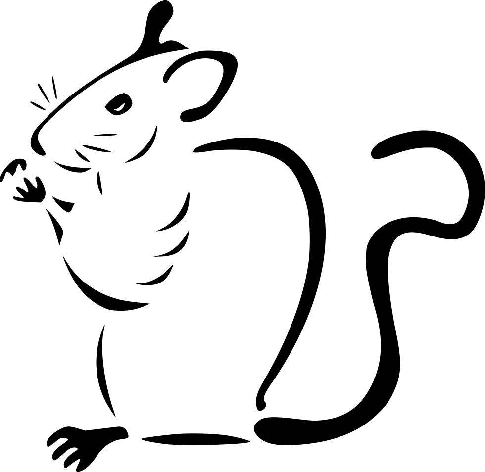 картинка силуэт крысы покажу несколько фотографий