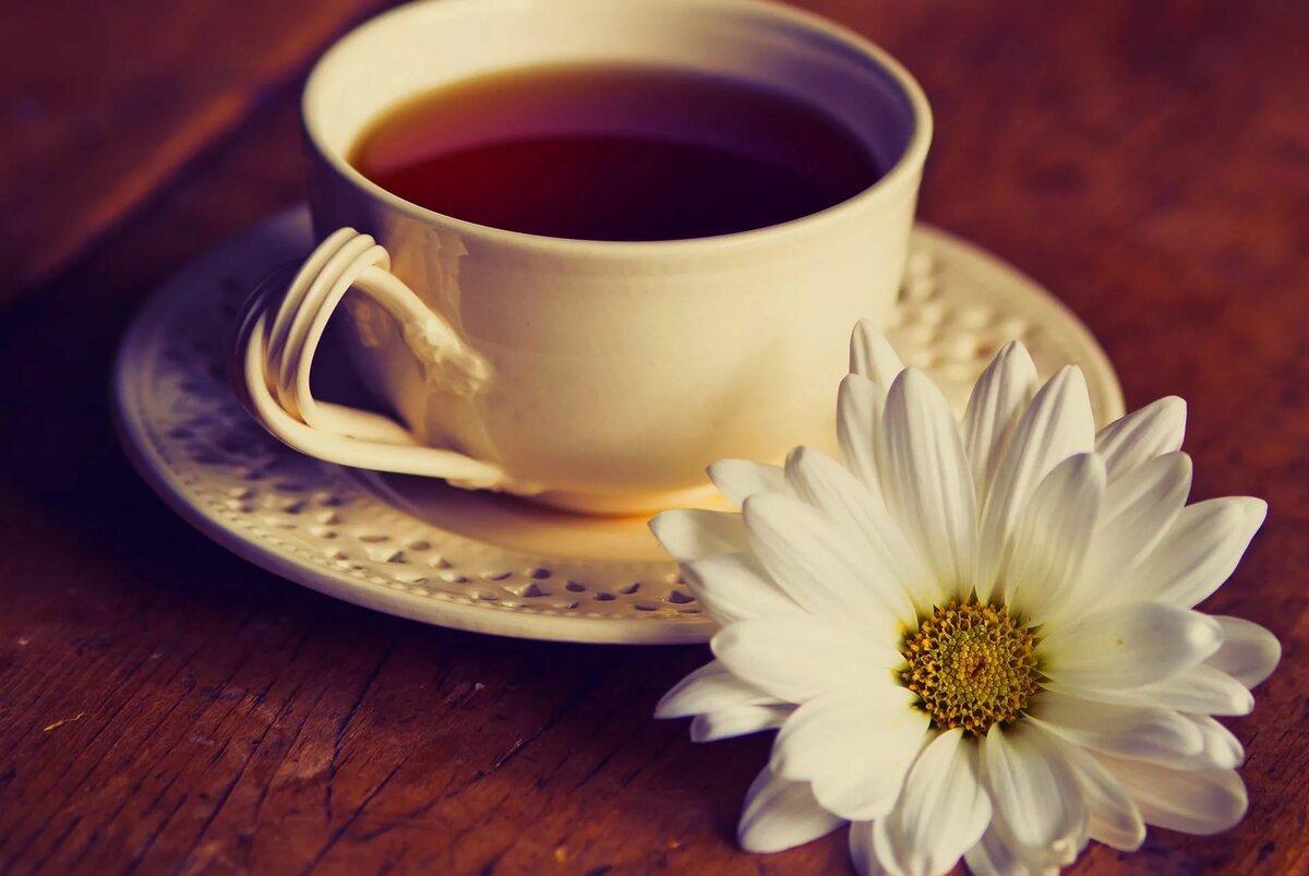 стиле лофт, фото чашечки кофе и ромашки на столе предлагает