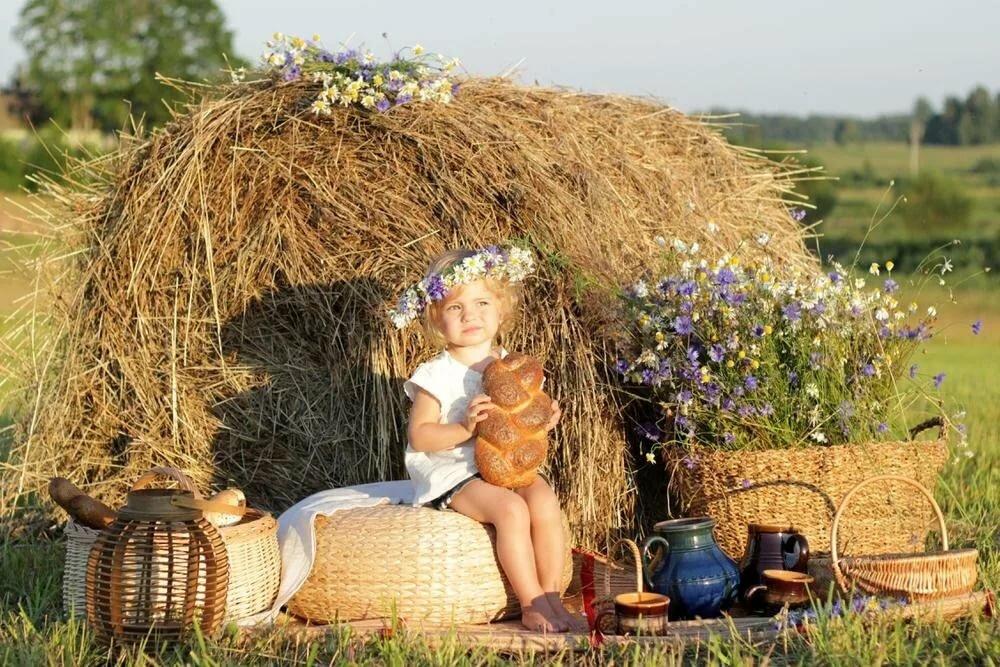Картинки для детей на сене