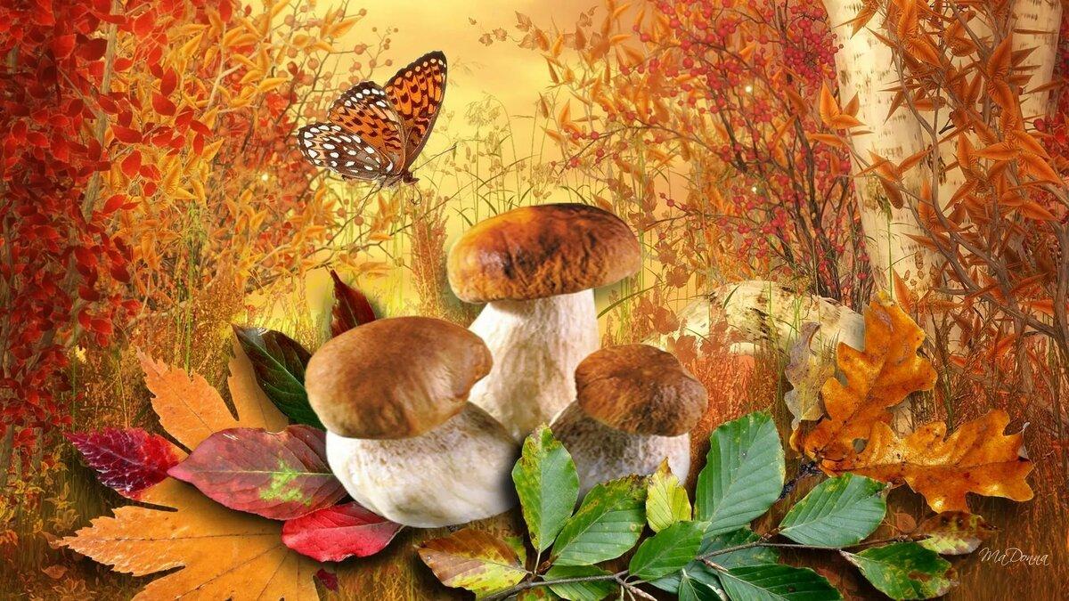 осень сказочные картинки с листьями предпочтения свободной независимой