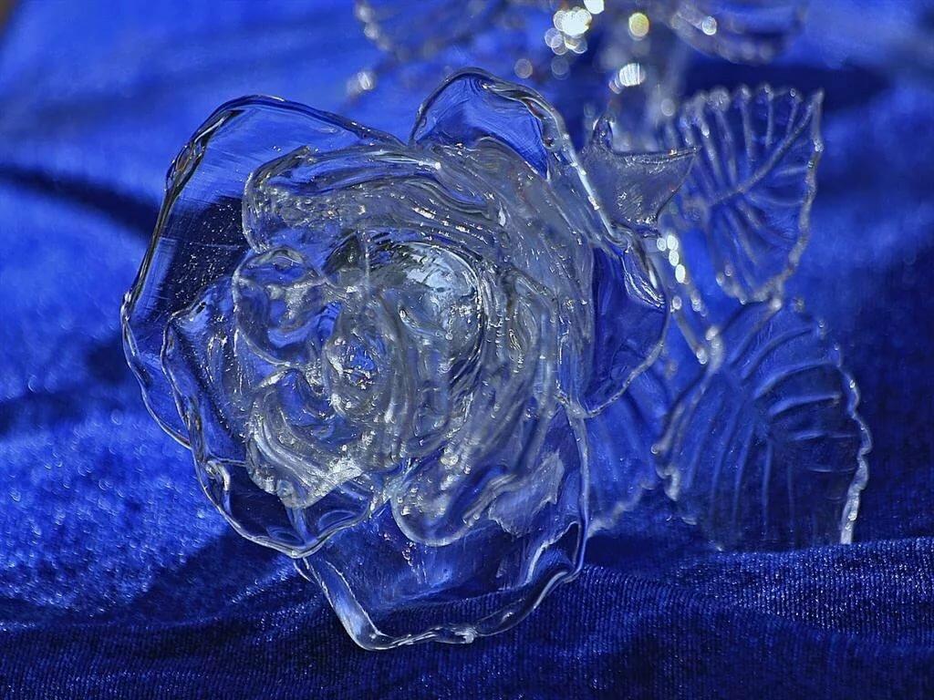 Картинки цветы во льду