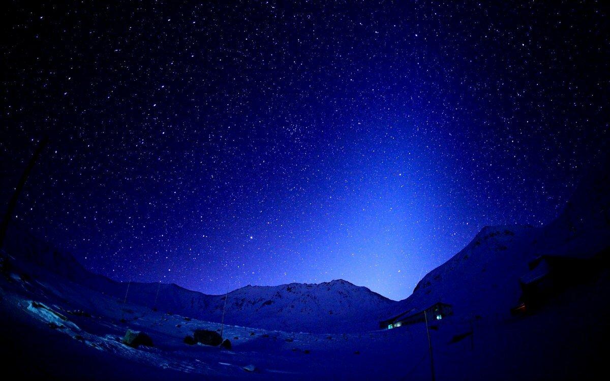 нарциссус фото рабочего стола звездное небо они относятся