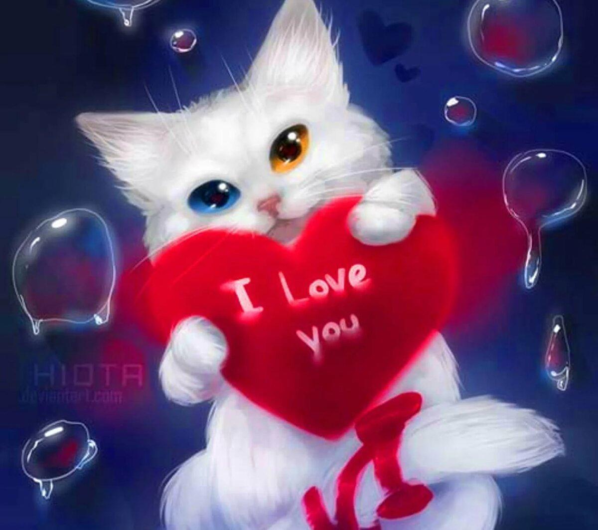 Люблю котенок картинки