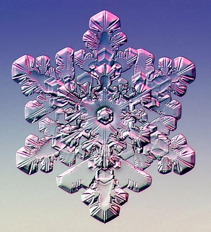 этой картинка в виде снежинки посвящена одной