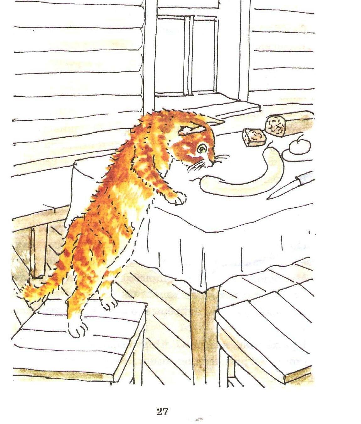 Раскраска кот ворюга распечатать