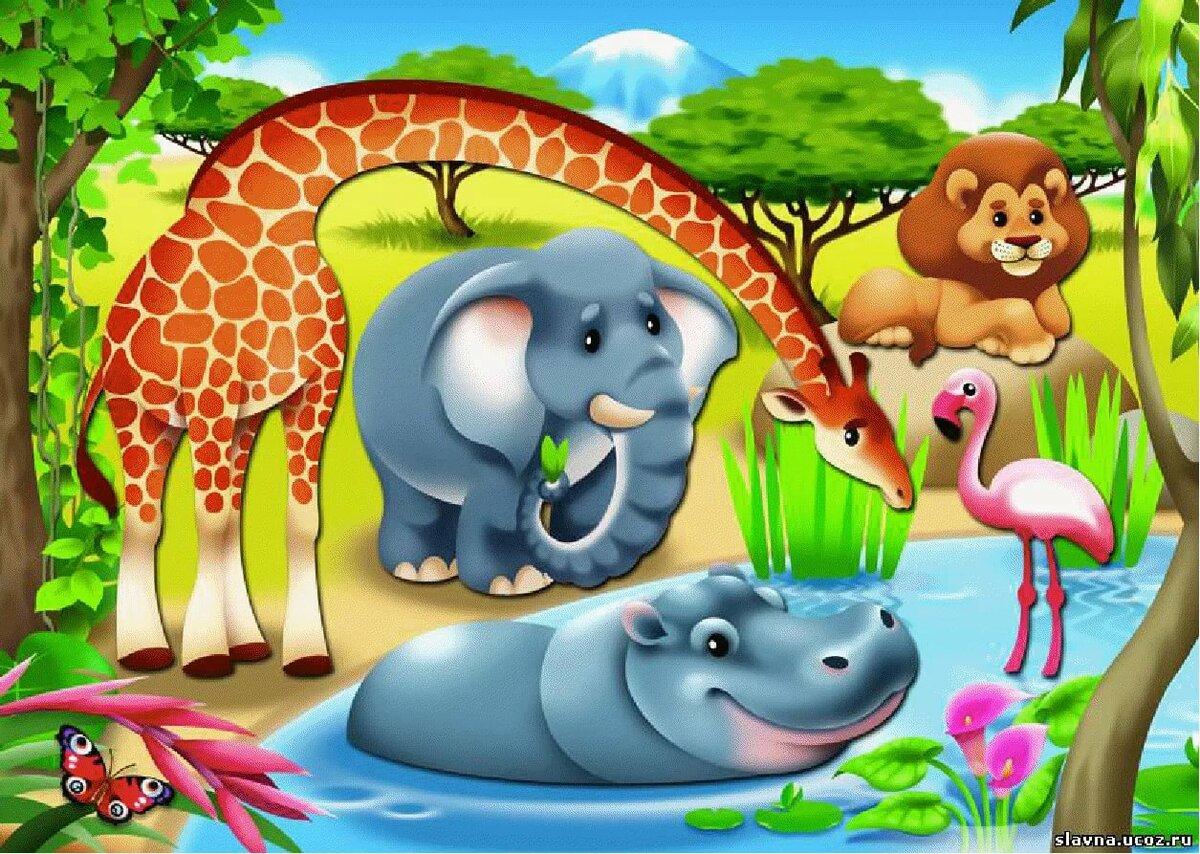 Картинки животные жарких стран для детей