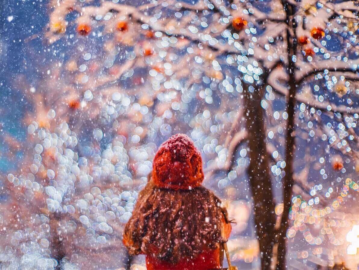сбора сдачи картинки ожидаем зиму праздники, дни