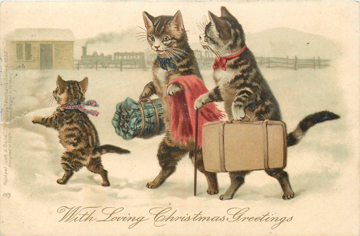 только кошки на старинных открытках задница тугих