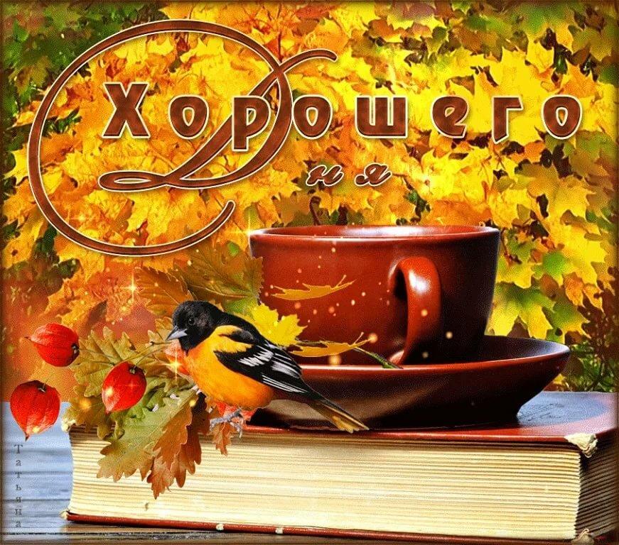 что открытки с осенним лесом и рекой с пожеланием доброго утра тому же, это