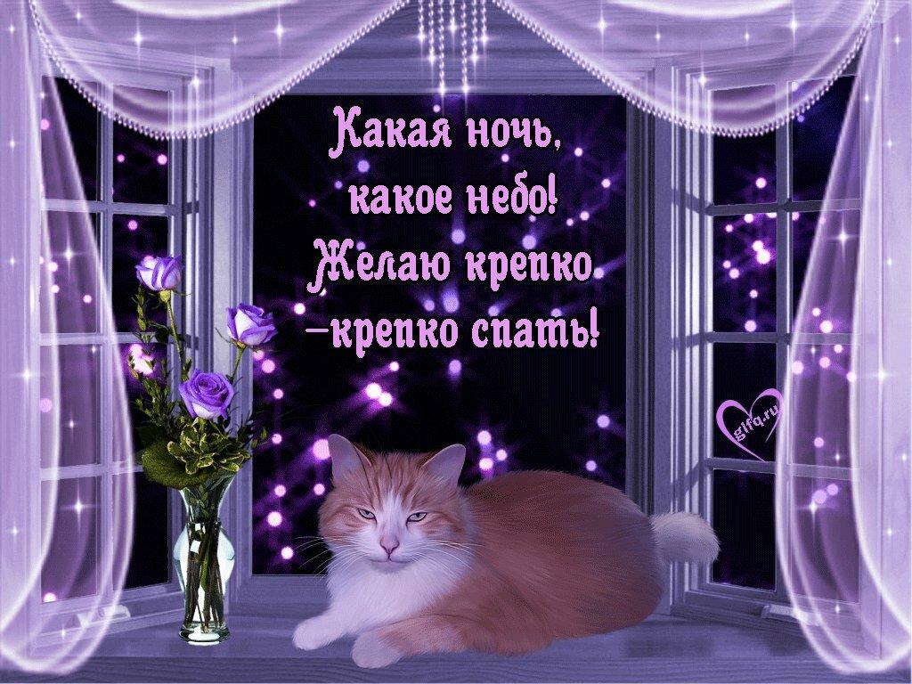 Картинка хорошего вечера и спокойной ночи прикольные