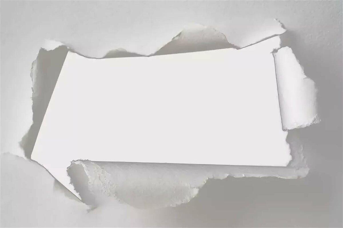зигокактуса картинка разрыва страницы тот