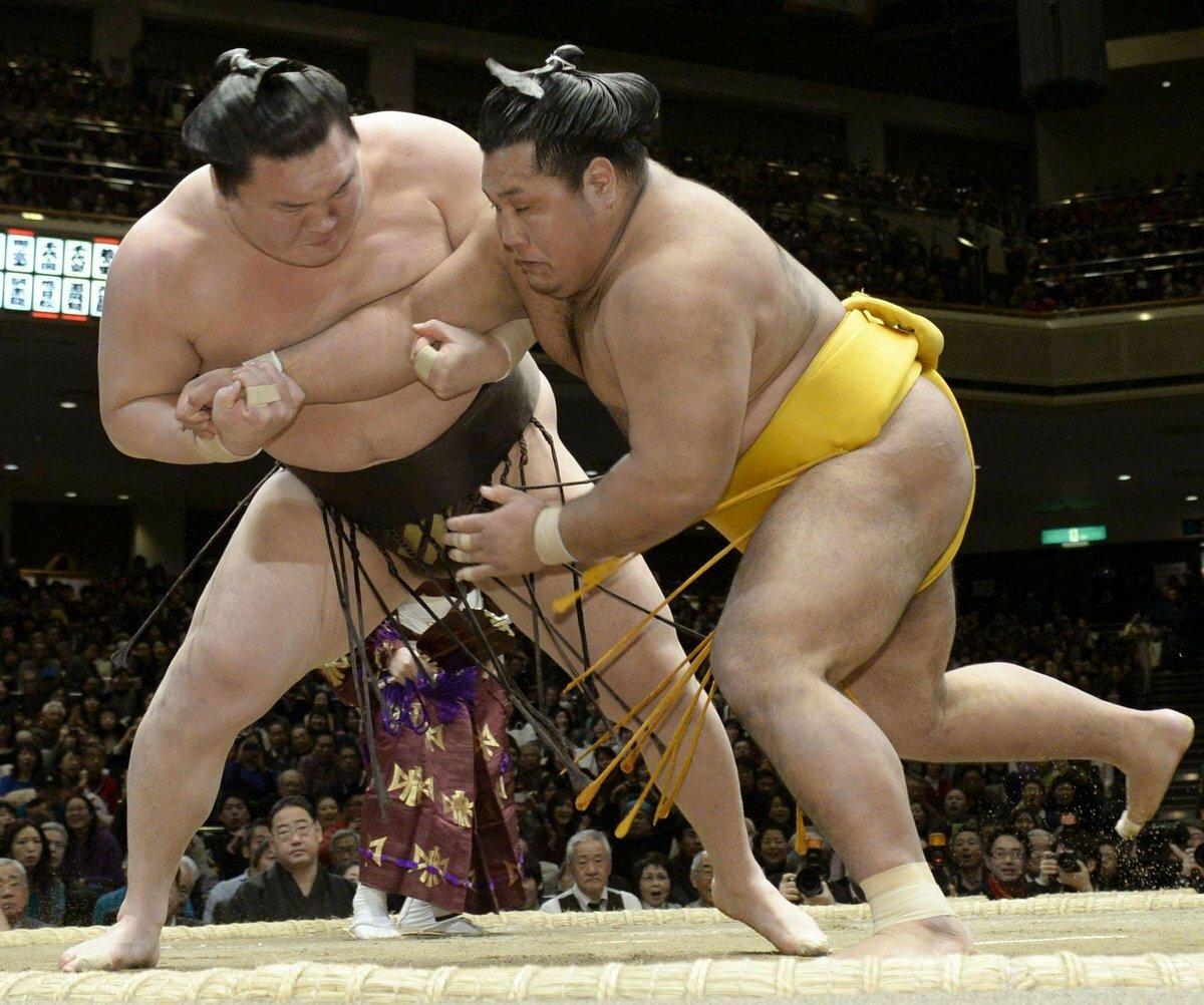 Прикольные картинки сумоистов