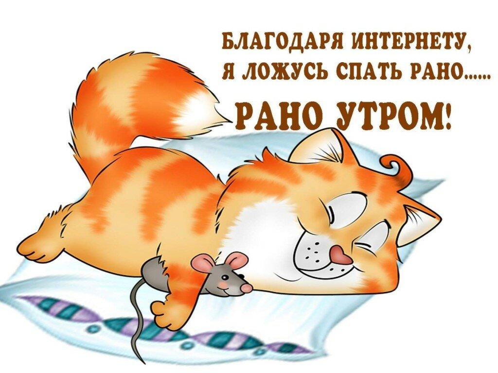 Картинка спокойной ночи юмор