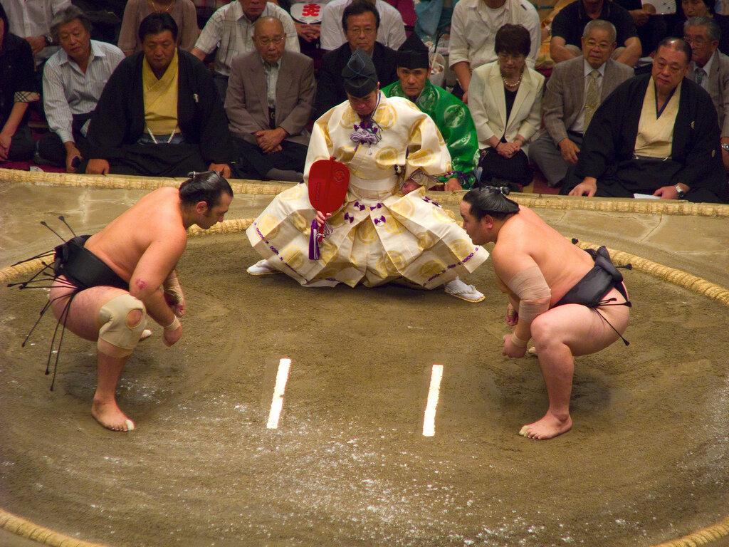 картинки сумо каратэ собираетесь