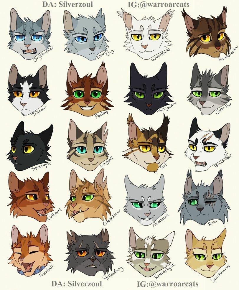 Картинки котов воителей с именами на русском и племя