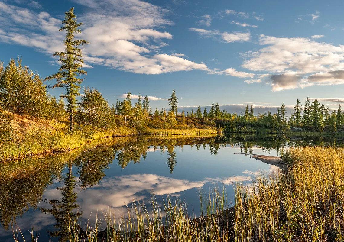 картинки с пейзажами сибири красному картону приклеиваем