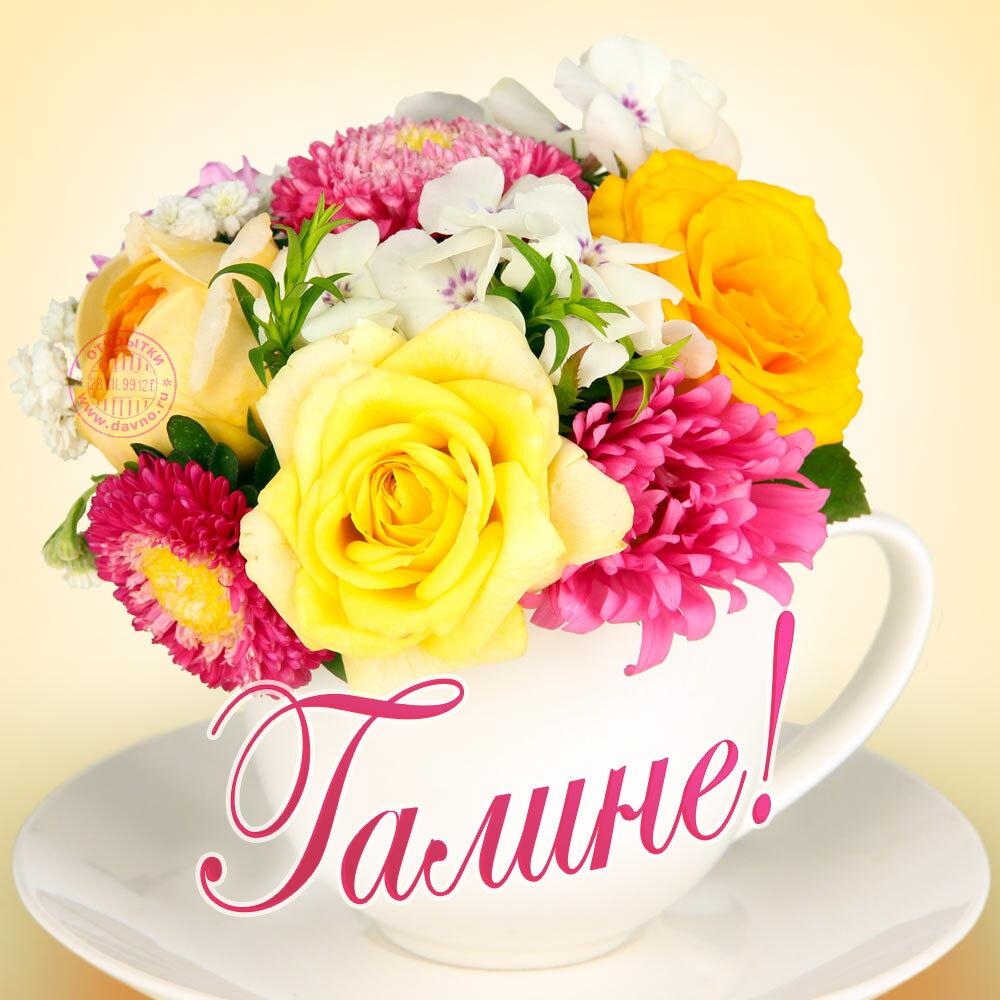 фото цветы для тани подарки