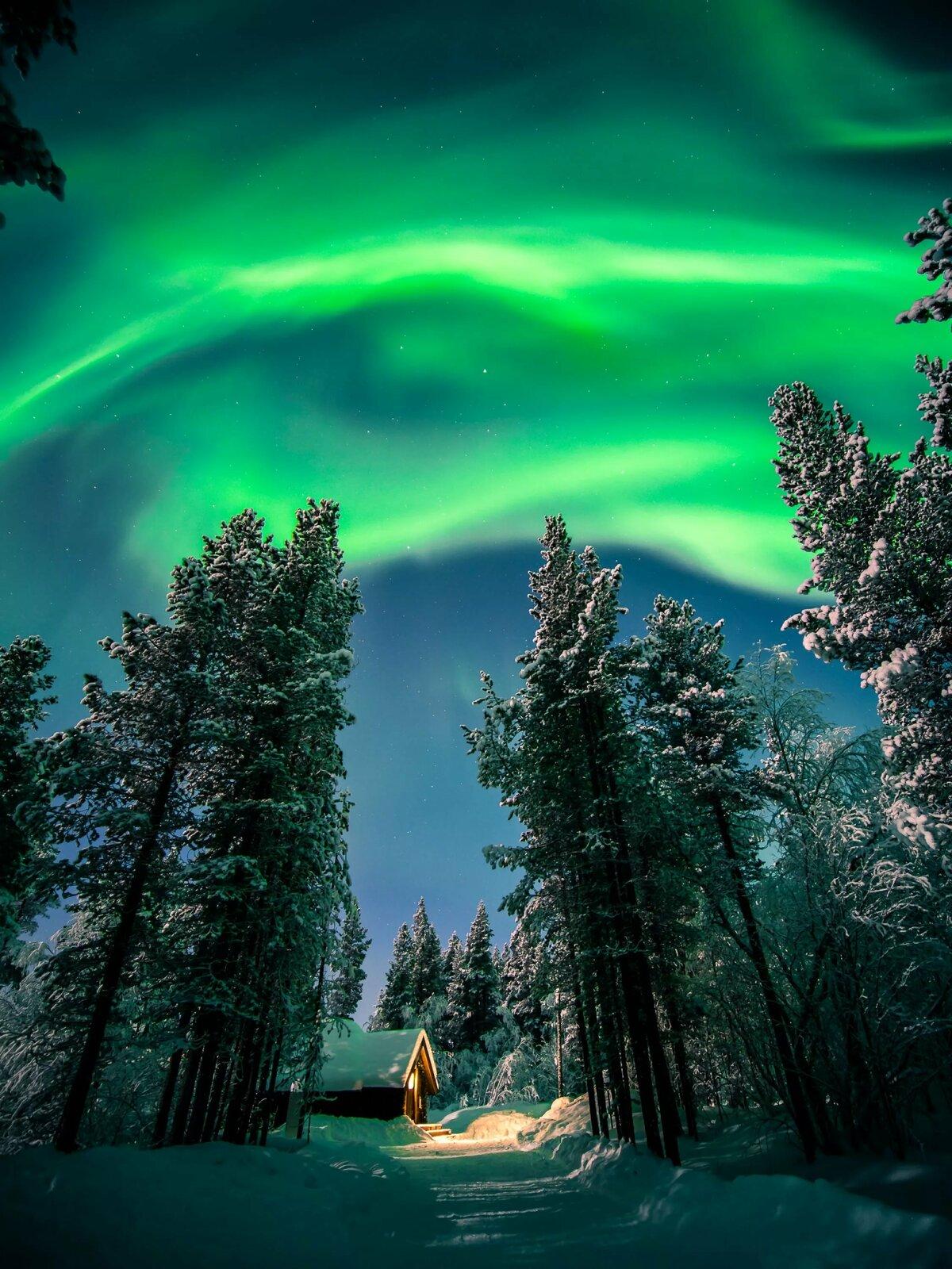 картинки северного сияния зимой журналы
