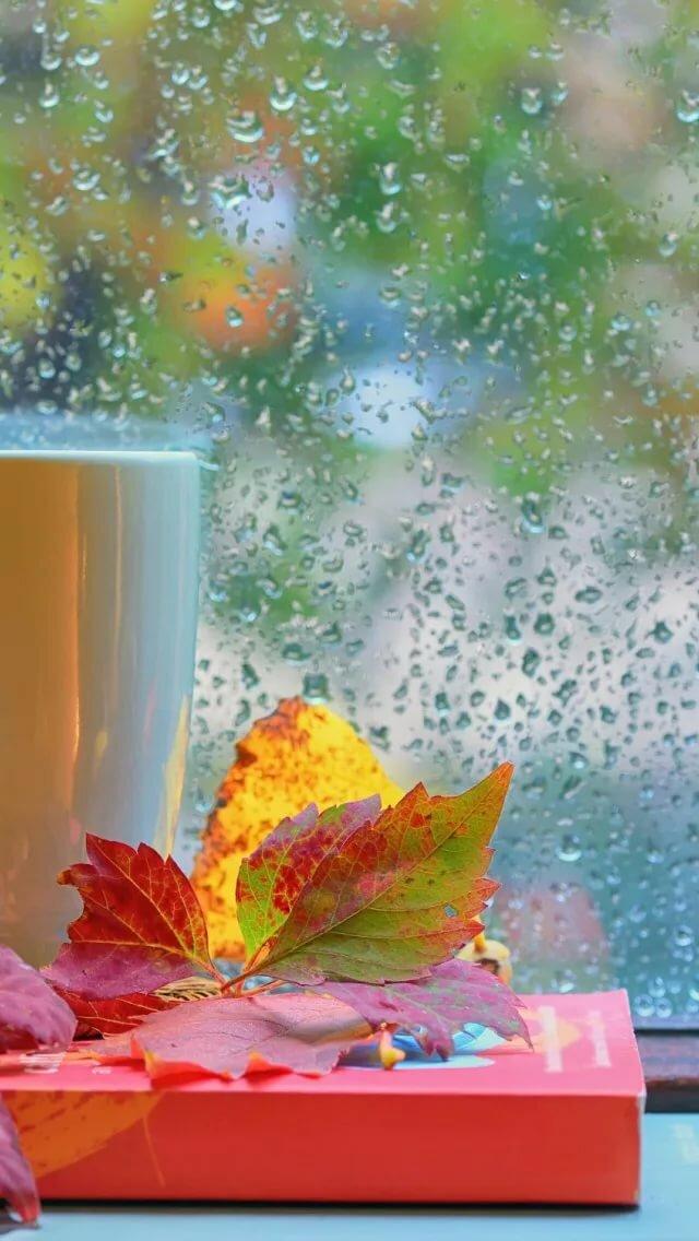 что, открытки дождливое утро осень должно быть специально