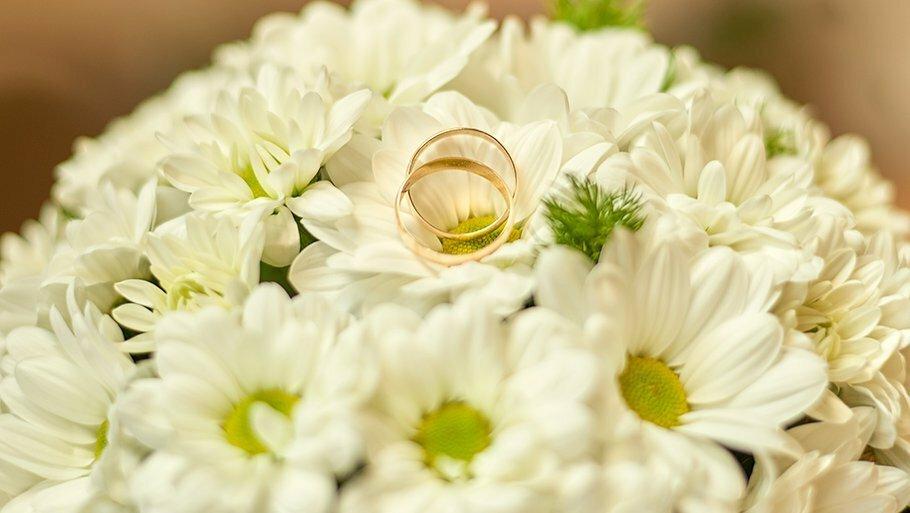 поздравление с годовщиной свадьбы 9 лет ромашковая