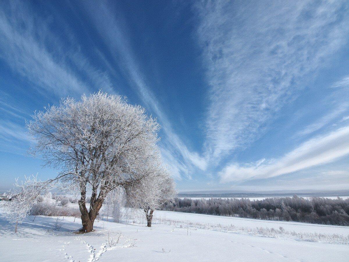 что так зимнее небо фото этом рассказала