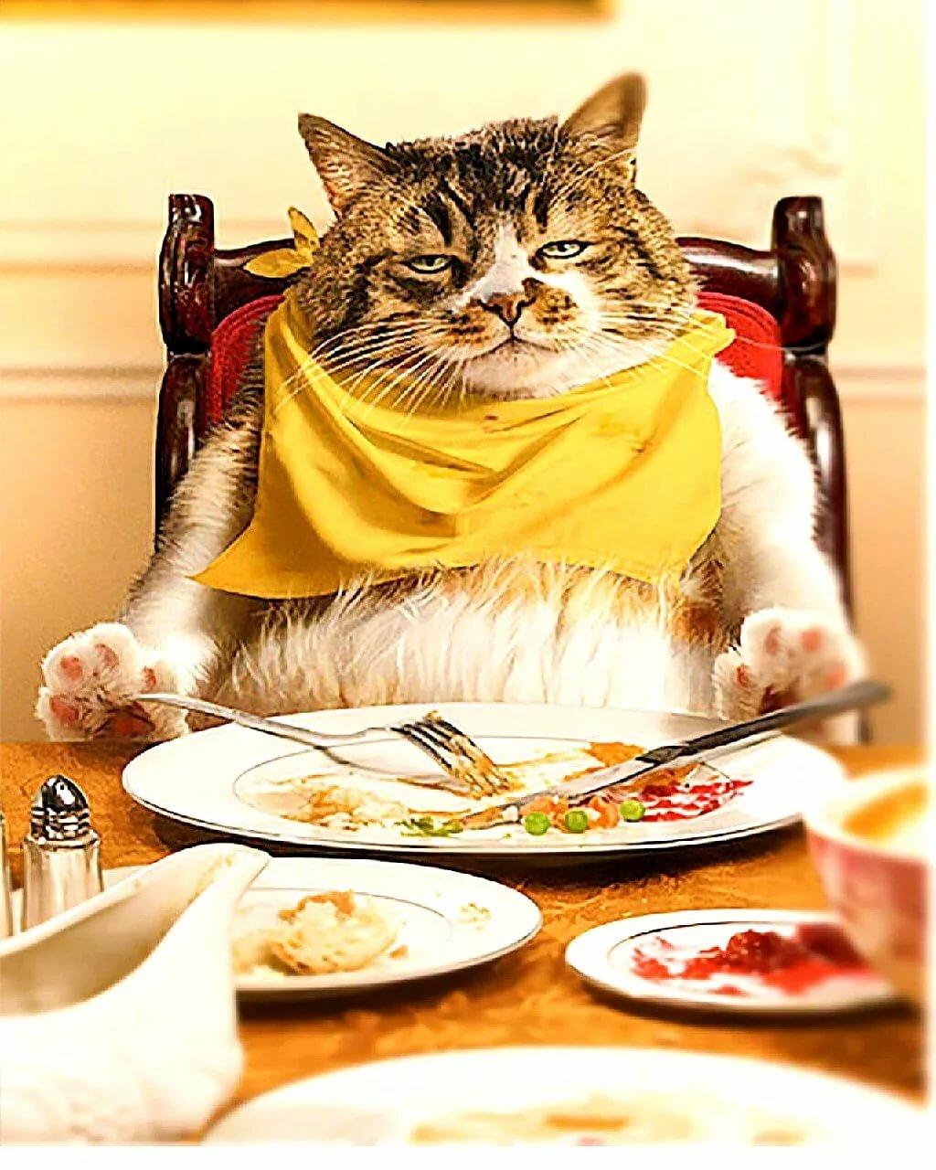 Картинка приятного ужина прикольные