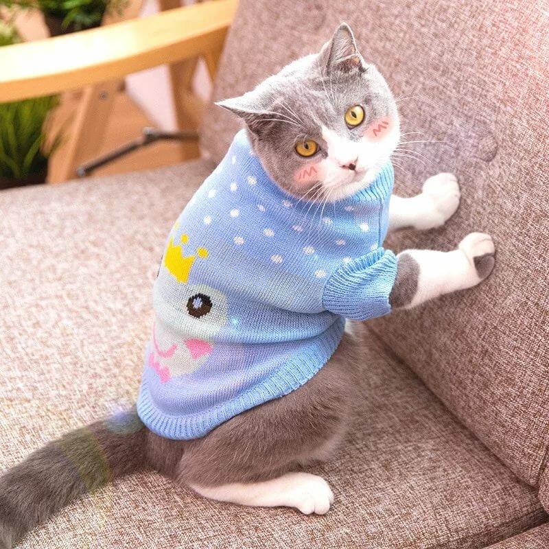 картинки кошек на одежде это создавалось