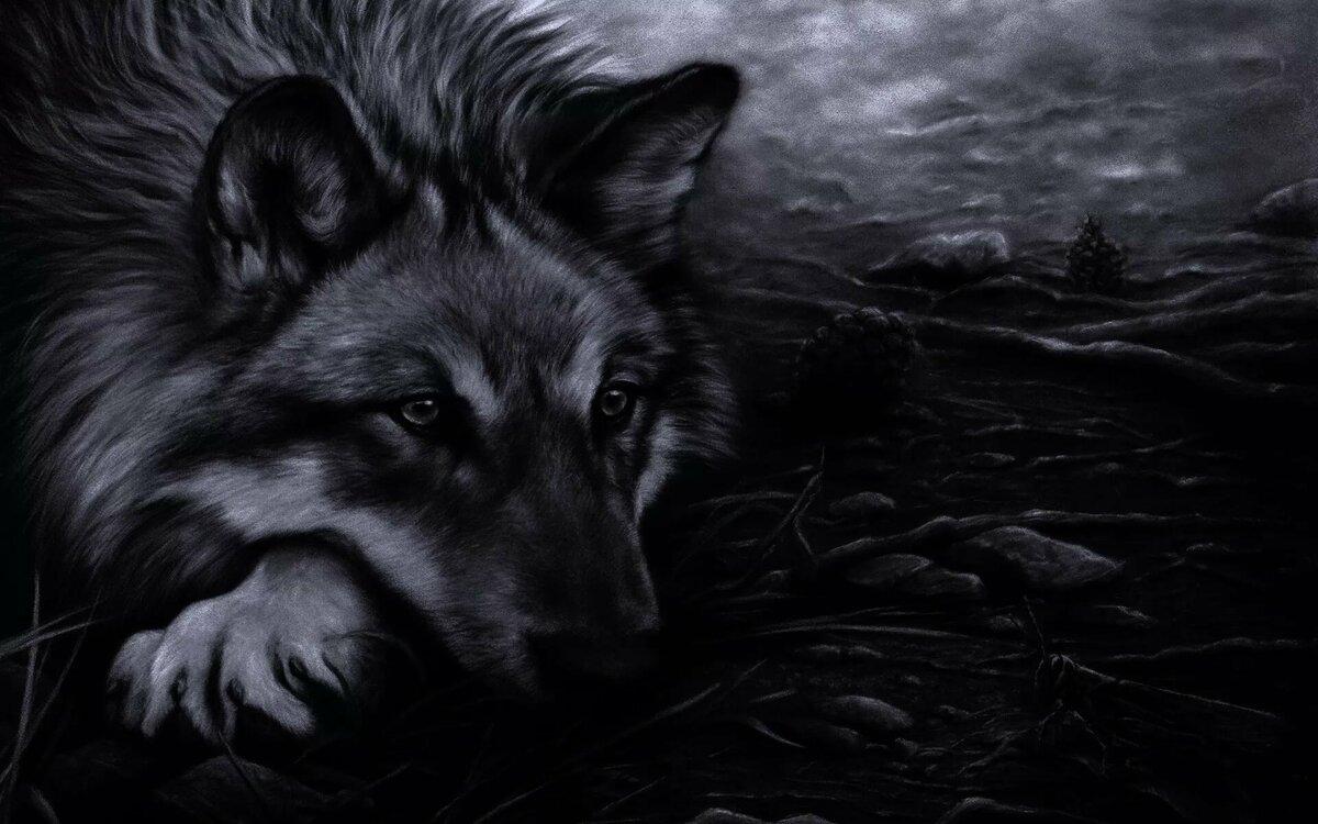 этого фоновые картинки волки мне