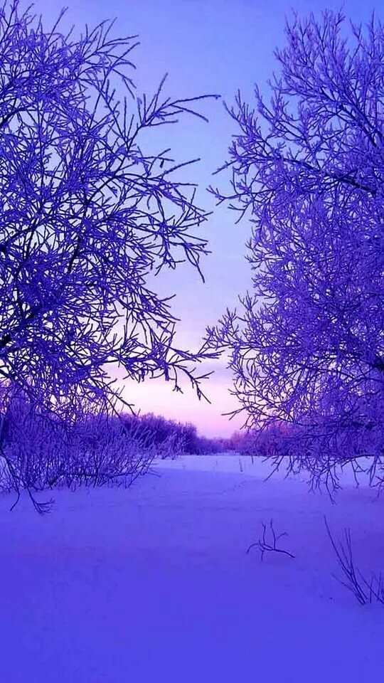 Красивые зимние картинки для самсунг